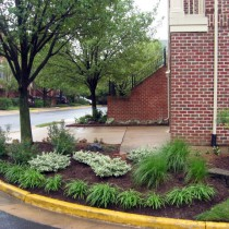 TH Landscaping Dunn Loring Va.