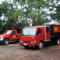 Lawn Landscape and Tree Service Northern Va.