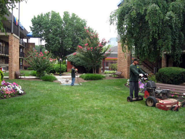 Lawn Care Professional Property Maintenance Inc