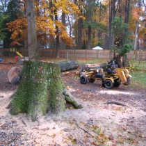 Fairfax Va. Stump Removal